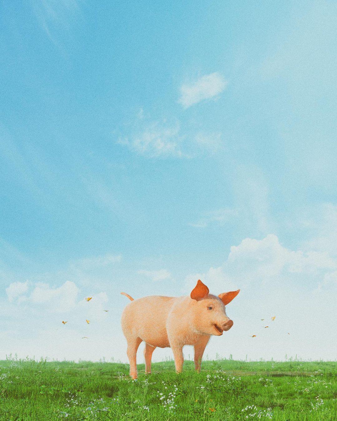 חזיר 🖼️ ביפל (cc)